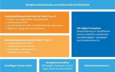 Euro-FH Soziale Arbeit Studienablauf