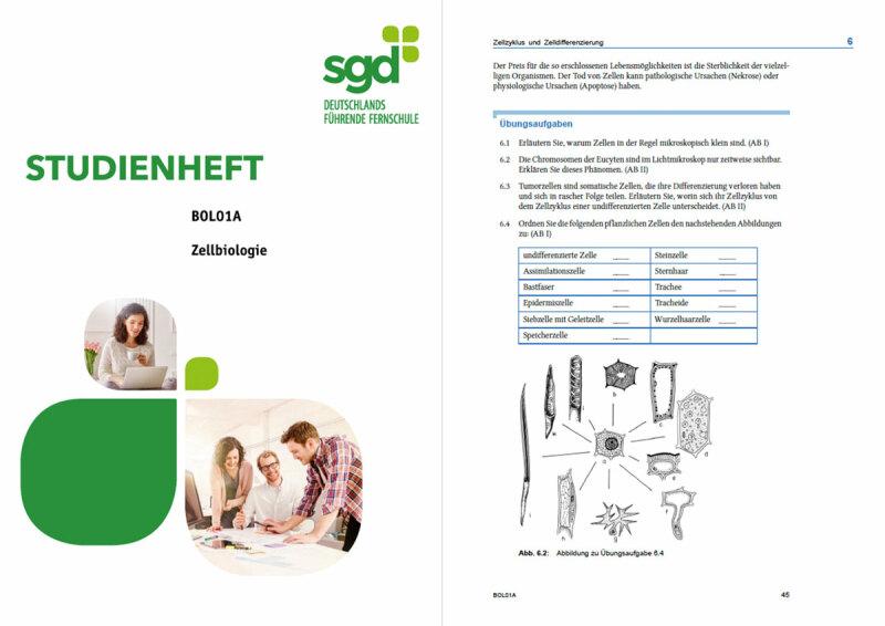 Studienheft Fachabitur SGD