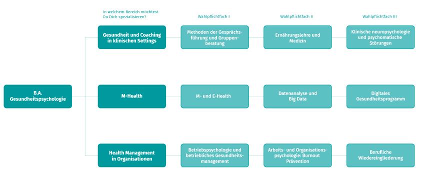 Gesundheitspsychologie Vertiefungen